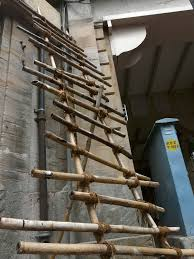 bamboo-ladder